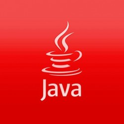 java software development services