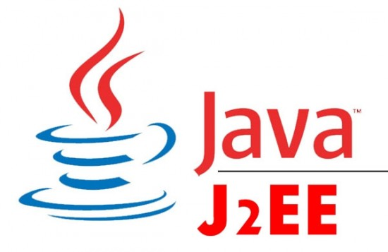 custom java software development